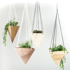Bring the best parts of the outdoors indoors with this beautiful, modern, hanging planter. Excellent for succulents, air plants, and any other indoor-friendly plant! I designed this planter in my stud Hanging Plants Outdoor, Diy Hanging Planter, Wood Planters, Indoor Planters, Hanging Planters, Planter Ideas, Plants Indoor, Indoor Gardening, Vegetable Gardening