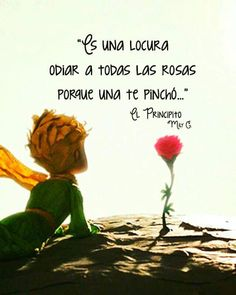 Little Prince Quotes, The Little Prince, Book Quotes, Life Quotes, Quotes About Everything, Sad Love, Spanish Quotes, Quotes To Live By, Qoutes