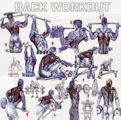 Back Exercises For Mass