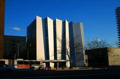 the Bronx Museum
