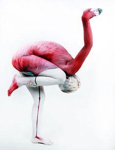 Animal Body Art - Artist: Gesine Marwedel