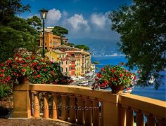 Portofino - View from the Veranda. Enjoy the view too - start by visiting our blog