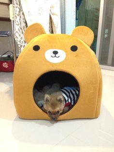 ที่พักผ่อนของแมว https://www.facebook.com/kowneawpai?fref=photo