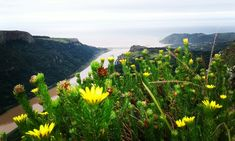 Port Saint Johns - Transkei Wild Coast, South Africa