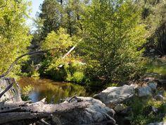 Arizona hike: Hiking Spree in Prescott