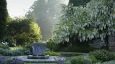 The Venetian wellhead and white wisteria in the garden at Scotney Castle, UK