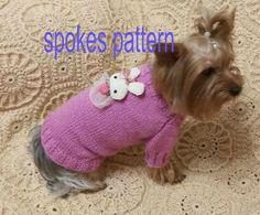 DIGITAL PATTERN:Knit Dog Clothes PatternKnit от LyudmilaHandmade