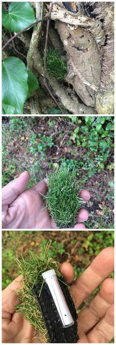Sneaky fake grass nano #geocache.  I actually like the placement of this one; being sort of on a tree base, it makes it look a little out of place and therefore a better chance of the observant person finding it.  Hidden in a field?  Probably forget it till spring when all the real grass is yellow.  (collage made from websta by pinterest.com/ibgeocaching)
