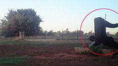 Bizarro: OVNI e Robô humanoide são avistados na mesma foto e intrigam entusiastas do fenomeno UFO ~ Sempre Questione