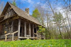 Meanderthals | Cradle of Forestry, Pisgah National Forest