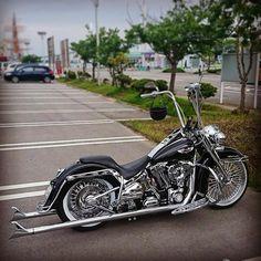 """4,505 curtidas, 17 comentários - Harley-Davidson Softail (@softailgram) no Instagram: """"Thanks for sharing: [ @spu_a.k.a_spu ] ••••••••••••••••••••••••••••••••••••••••••••••• Follow…"""""""