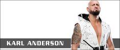 Joey Ryan, Japan Pro Wrestling, Theme Song, Wwe, Evolution, Career, American, Wedding Ring, Carrera