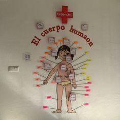 Primero de primaria. Trabajo de investigación junto a los abuelos. (Médicos) El cuerpo humano.  Exposición tarea integrada final.
