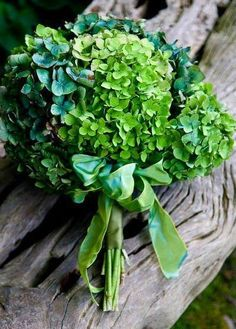 Shamrocks in bouquet or maybe centerpieces