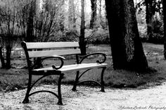Bench in the park by Sebastian Lacherski on 500px