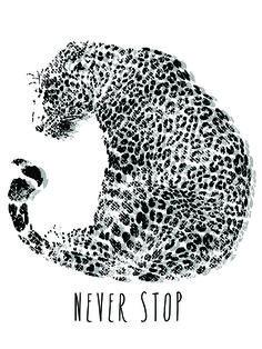 animal print - never stop - angel bco