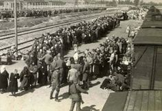 A Day in the History – 6th March 1943.Two big transports arrived in Auschwitz. The RSHA transport number 34 came from Berlin and there were 1128 Jewish people (540 men and 588 women and children). After the selection, 389 men and 96 women were registered in the camp. 643 people from this transport (151 men and 492 women and children) were killed in the gas chamber. Read more: https://www.instagram.com/p/BCnck8kPDeZ/?taken-by=auschwitz.study.group