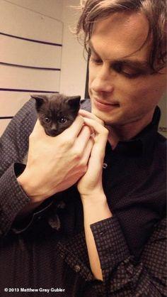 (1) kirsten vangsness | Tumblr Matthew Grey, Matthew Gray Gubler, Giga Pet, Dr Reid Criminal Minds, Dr Spencer Reid, Spencer Reed, Tiny Kitten, Fluffy Animals, Dear God