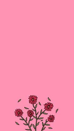 57 ideas for flowers pink wallpaper backgrounds wall papers Pink Wallpaper Backgrounds, Iphone Background Wallpaper, Trendy Wallpaper, Cute Wallpaper Backgrounds, Tumblr Wallpaper, Aesthetic Iphone Wallpaper, Flower Wallpaper, Screen Wallpaper, Cute Wallpapers