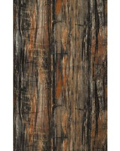 Petrified Wood- look counter top from Formica. (great for island)