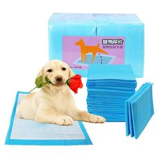 WERSHOW Disposable Puppy Pet Housebreaking Training Underpads Chux Potty Wee Wee Pads Dogs or Cats * Read more reviews of the product by visiting the link on the image. (This is an affiliate link) #LitterandHousebreaking