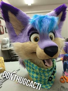 Riley the purple coyote! My suit is finally done and on its way to me!! ♡ Riley (c) me Suit by Don't Hug Cacti - http://www.donthugcacti.com/