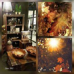 Prírodná krása#Nová kolekcia#LA VIE NATURELLE#🍁🍂🍁# doplnky#nábytok#dekorácie#prírodnè materiály#drevo#kameň#prútie#koža# New#fall#🍁🍁🍁#Jolipa#J-line#Jline#Bratislava# natural#wood#stone#leathers##textiles#accessories#homedesign#home#@natural beauty#heat of home#🍁🍂🍁#@a.keramika.cersa#💛💛💛#maisonobjet#Messe Maison & Objet Paris#🍁💛🍁#