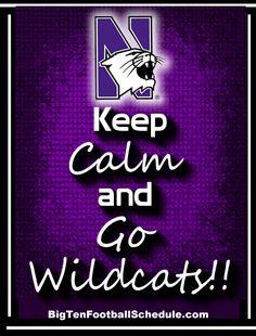 Go Wildcats!!!! http://www.bigtenfootballschedule.com