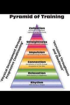 pyramid of trng