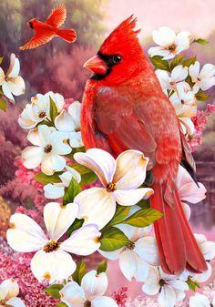 Virginia State Bird and Flower Greg Giordano