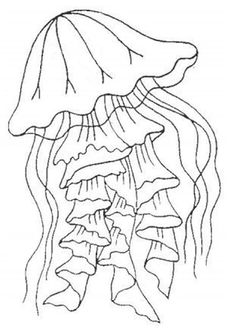 Free Printable Jellyfish Coloring Pages from Animal Coloring Pages category. Printable coloring pages for kids that you could print out and color. Check out our series and printing the coloring pages free of charge. Fish Coloring Page, Coloring Pages For Boys, Mandala Coloring Pages, Animal Coloring Pages, Coloring Pages To Print, Coloring Book Pages, Sea Turtle Quilts, Arte Linear, Free Adult Coloring