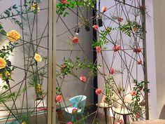 Trennwand Metallspanndraht Salone del Mobile Rosen