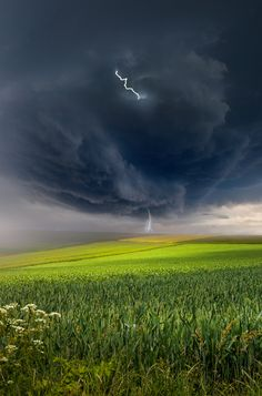 A storm, lightning and attentive photographer. Here's what it takes to have that result. I love the color contrast between the green of nature and the black storm. All Nature, Science And Nature, Amazing Nature, Fuerza Natural, Tornados, Thunderstorms, Wild Weather, Storm Clouds, Thunder Clouds