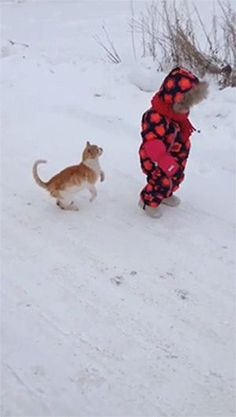 The Funniest 20 GIFs Currently On The Internet  awesome)