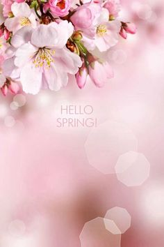 Da la bienvenida a la primavera con alguna de estas 10 originales the spring wakes us nurtures us and revitalizes us how often does your spring come if you are a prisoner of the calendar it comes once a year mightylinksfo