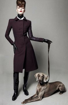 "Weimaraners are always in style. ""Best in Show"" shoot from British Vogue."