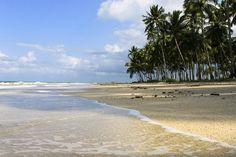 Litoral Pernambuco e Alagoas