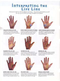 Life Line: Line of Life in Palm Reading & Palmistry! Wiccan, Witchcraft, Tarot, Palm Reading Charts, Palm Reading Lines, Cold Reading, Palmistry Reading, Für Dummies, Fortune Telling