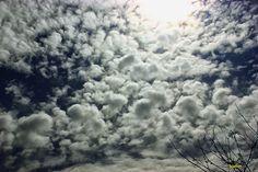 Rare clouds...