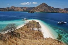 Pulau Kelor (Kelor island) in Komodo National Park - Indonesia Komodo National Park, Komodo Dragon, My Land, Archipelago, Travel Around, Serenity, Philippines, Earth, Art Nature