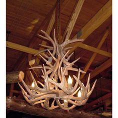 Shop Canadian Antler Designs Reproduction Brown Whitetail Antler Chandelier at Lowe's Canada online store. Find Chandeliers at lowest price guarantee. Cabin Chandelier, Deer Antler Chandelier, Antler Lights, Cabin Lighting, Rustic Lighting, Antler Light Fixtures, Light Bulb Bases, Modern Industrial, Hanging Lights