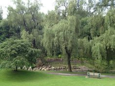 Botanical Gardens, Toronto, Lawn, Golf Courses, Country Roads