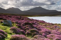 Beinn Mhor - South Uist, Scotland