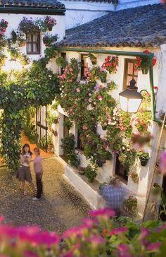5 de diciembre de 2012: Conseguirán los patios de Córdoba el título de Patrimonio Inmaterial?