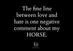 #horse #horses #aHorseBox #equestrian
