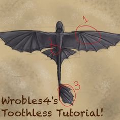 How to draw a dragon thoughts 41 Ideas Toothless Drawing, Hiccup And Toothless, Httyd, How To Draw Toothless, Toothless Costume, Dragon Costume, Toothless Cake, Avatar Picture, Dragon Tail