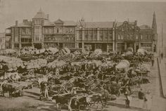 Boer War: Johannesburg Market | Flickr - Photo Sharing!