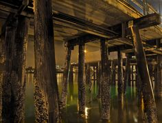 Under the Pier by Rob Hopkins