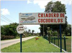 Criadero de cocodrilos Boca de Guamá Ciénaga de Zapata. Trinidad, Signs, Crocodiles, Factory Farming, Santiago De Cuba, Houses, Beach, Shop Signs, Sign