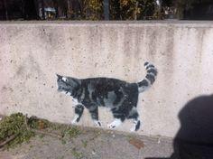 Graffiti am #Hofgarten, #Innsbruck Innsbruck, Graffiti, Cats, Animals, Courtyard Gardens, Gatos, Animales, Kitty Cats, Animaux
